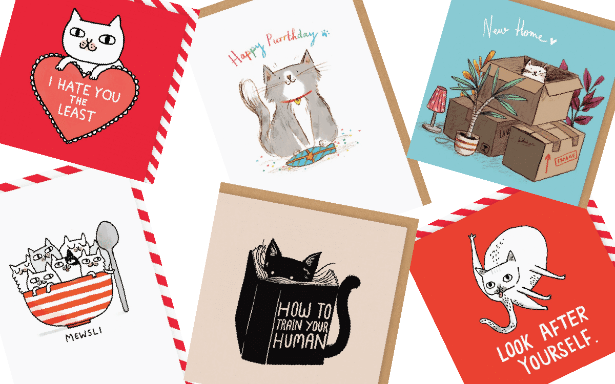 Greeting Cards For Cats
